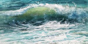 Shoreline study 19016 by Carole Malcolm