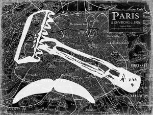 Groomed Paris by Carole Stevens