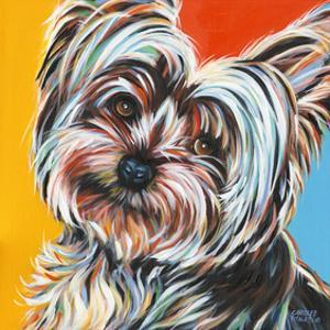 Sweet Yorkie II by Carolee Vitaletti