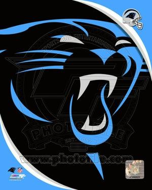 Carolina Panthers 2012 Team Logo