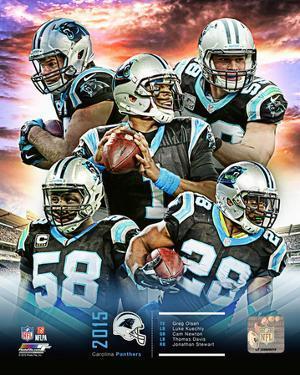 Carolina Panthers 2015 Team Composite