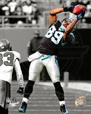 Carolina Panthers - Steve Smith Photo