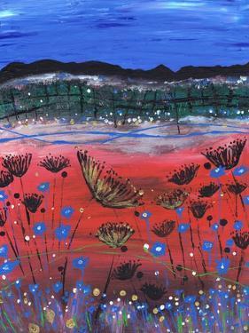 The Highlands by Caroline Duncan