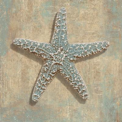 Aqua Starfish by Caroline Kelly