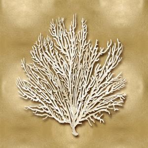 Sea Fan on Gold I by Caroline Kelly