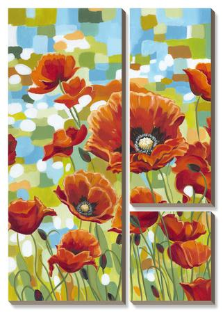 Vivid Poppies I by Caroline Vitaletti