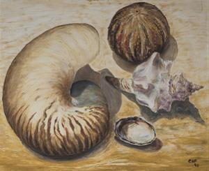 Seashells, 1993 by Carolyn Hubbard-Ford