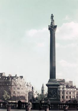 Monumental View XII by Carolyn Longley