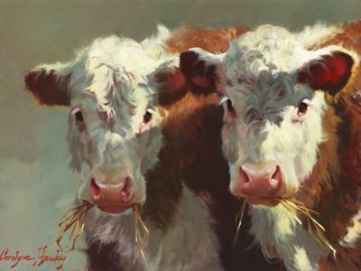 Cow Belles by Carolyne Hawley