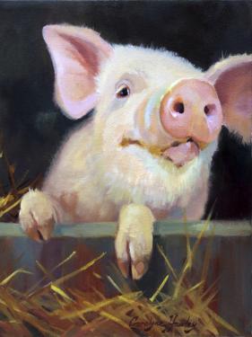 Farm Club II by Carolyne Hawley