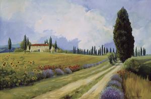 Holiday in Tuscany by Carolyne Hawley
