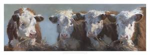 Little Bull & the Babes by Carolyne Hawley