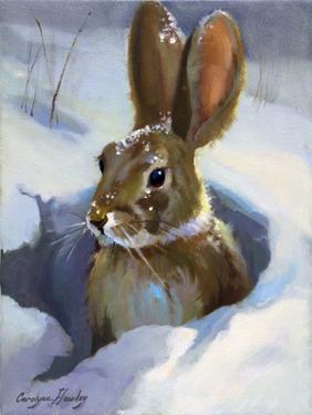Snow Bunny by Carolyne Hawley