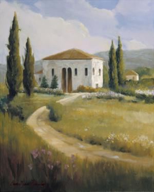 Tuscany Afternoon by Carolyne Hawley