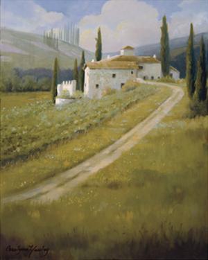 Tuscany Vineyard by Carolyne Hawley