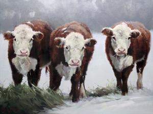 Winter Shadows by Carolyne Hawley