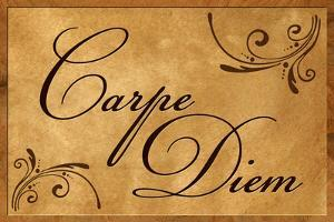 Carpe Diem Seize the Day Wood Carving Plastic Sign