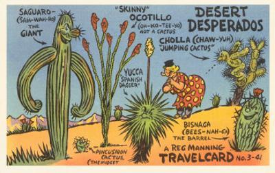 Cartoon Depicting Kinds of Cacti