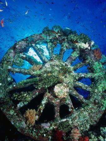A Locomotive Wheel is One of the Remains of the Wreck of the Numidea, Sank in 1901, Egypt by Casey Mahaney