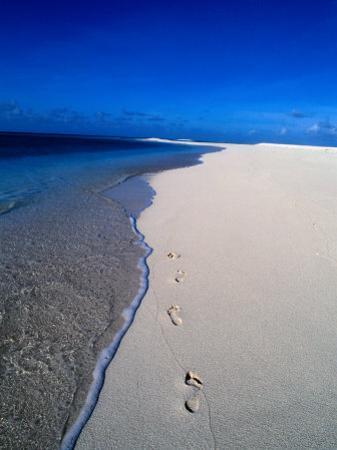 Footprints on Beach, Fiji by Casey Mahaney