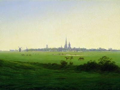 Meadows near Greifswald by Caspar David Friedrich
