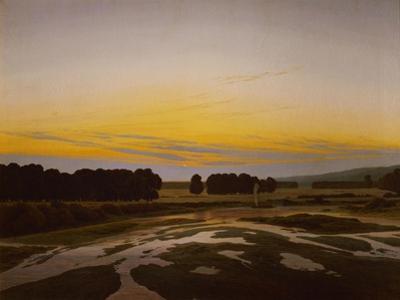 The big preserve near Dresden by Caspar David Friedrich