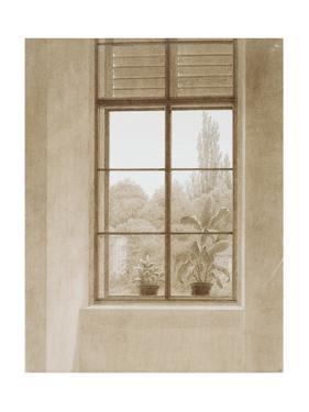 Window Looking over the Park, 1810-1811 by Caspar David Friedrich