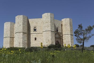 https://imgc.allpostersimages.com/img/posters/castel-del-monte-octagonal-castle-built-for-emperor-frederick-ii-in-the-1240s-apulia-italy_u-L-PWFD6U0.jpg?p=0