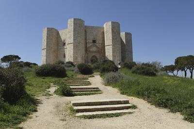 https://imgc.allpostersimages.com/img/posters/castel-del-monte-octagonal-castle-built-for-emperor-frederick-ii-in-the-1240s-apulia-italy_u-L-PWFDWV0.jpg?p=0