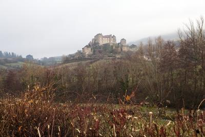https://imgc.allpostersimages.com/img/posters/castle-of-berze-le-chatel-on-the-way-to-cluny-burgundy-france-europe_u-L-PQ8OKZ0.jpg?p=0