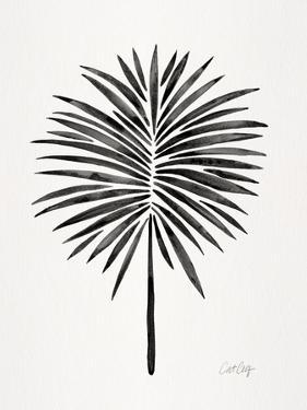 Black Fan Palm by Cat Coquillette