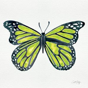 Butterfly in Lime by Cat Coquillette