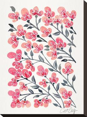 Cherry Blossoms by Cat Coquillette