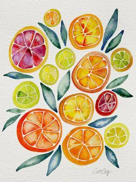 Citrus Slices by Cat Coquillette