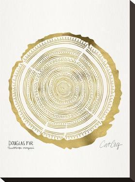Douglasfir by Cat Coquillette