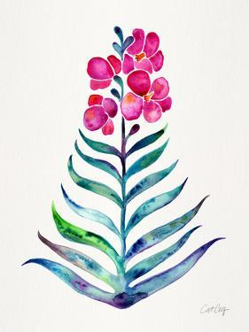 Fuchsia and Indigo Orchid Bloom by Cat Coquillette
