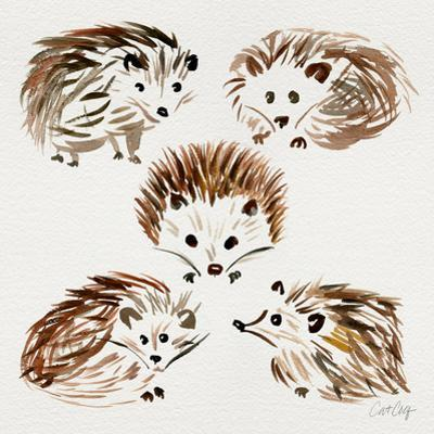 Hedgehogs by Cat Coquillette