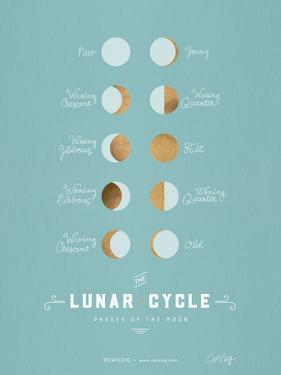 Lunar Phases Robins Egg Blue by Cat Coquillette