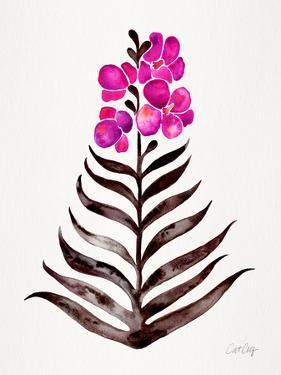 Magenta Black Orchid Bloom by Cat Coquillette