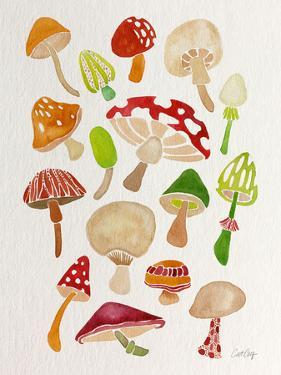 Mushrooms by Cat Coquillette