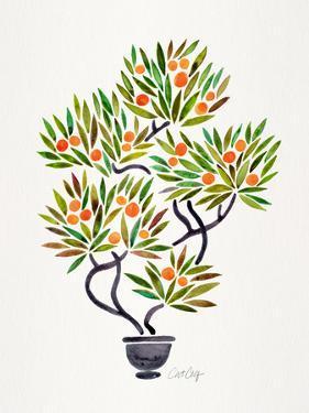 Orange Bonsai Orange by Cat Coquillette