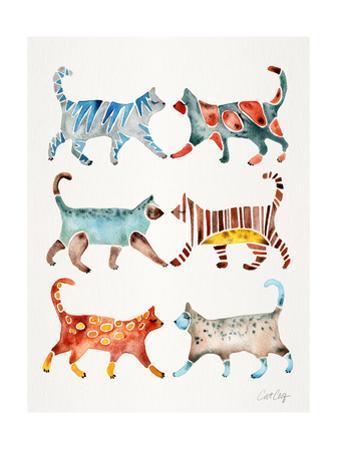 Original Cat Collection