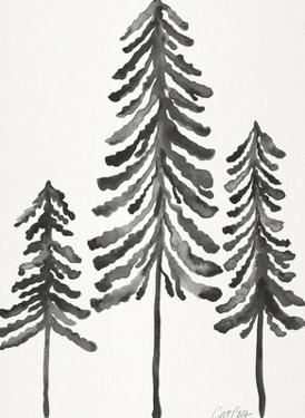 Pine Trees Black by Cat Coquillette