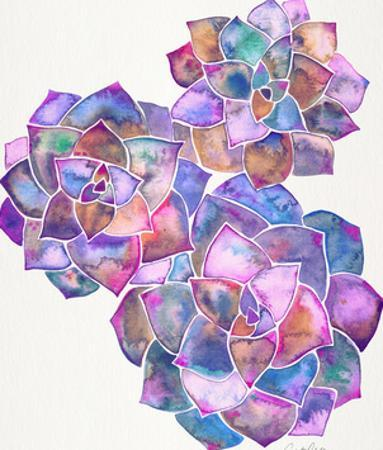Rosette Succulents Galaxy by Cat Coquillette