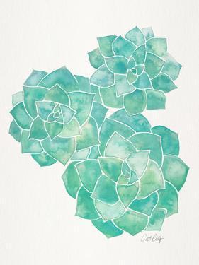 Rosette Succulents Mint by Cat Coquillette