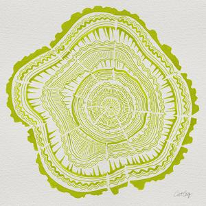 Tree Rings Lime by Cat Coquillette