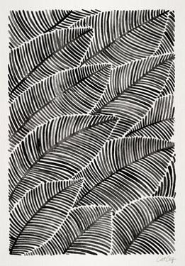 Tropical Leaves in Black by Cat Coquillette