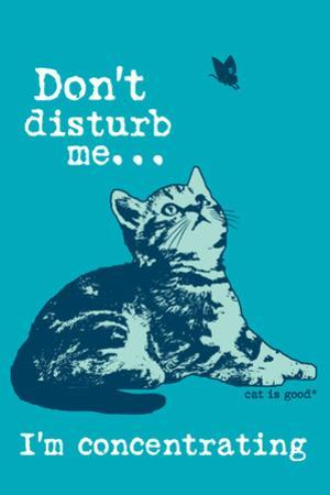 Dont Disturb Me by Cat is Good