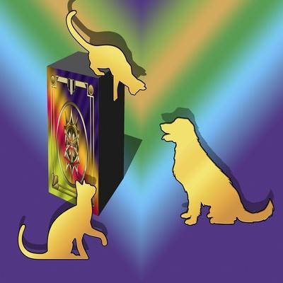 https://imgc.allpostersimages.com/img/posters/cat-on-a-box_u-L-Q1CQLA30.jpg?artPerspective=n