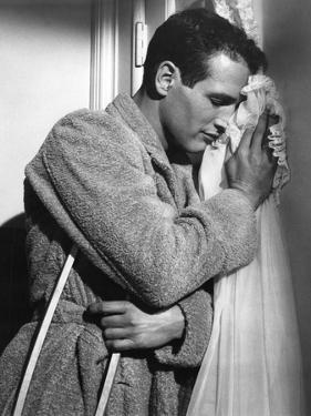 CAT ON A HOT TIN ROOF, 1958 directed by RICHARD BROOKS Paul Newman (b/w photo)